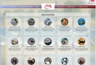 Página de guía de aves de la web Madrid Birdwatching.