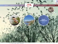Web Madrid Birdwatching